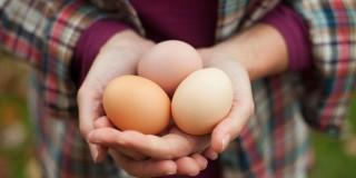 7 Makanan Sumber Lemak Baik yang Nikmat Disantap