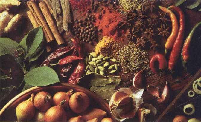 5 Bumbu Dapur yang Ampuh Membuat Jerawat Kabur